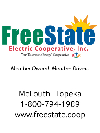 FreeStateElectricAd